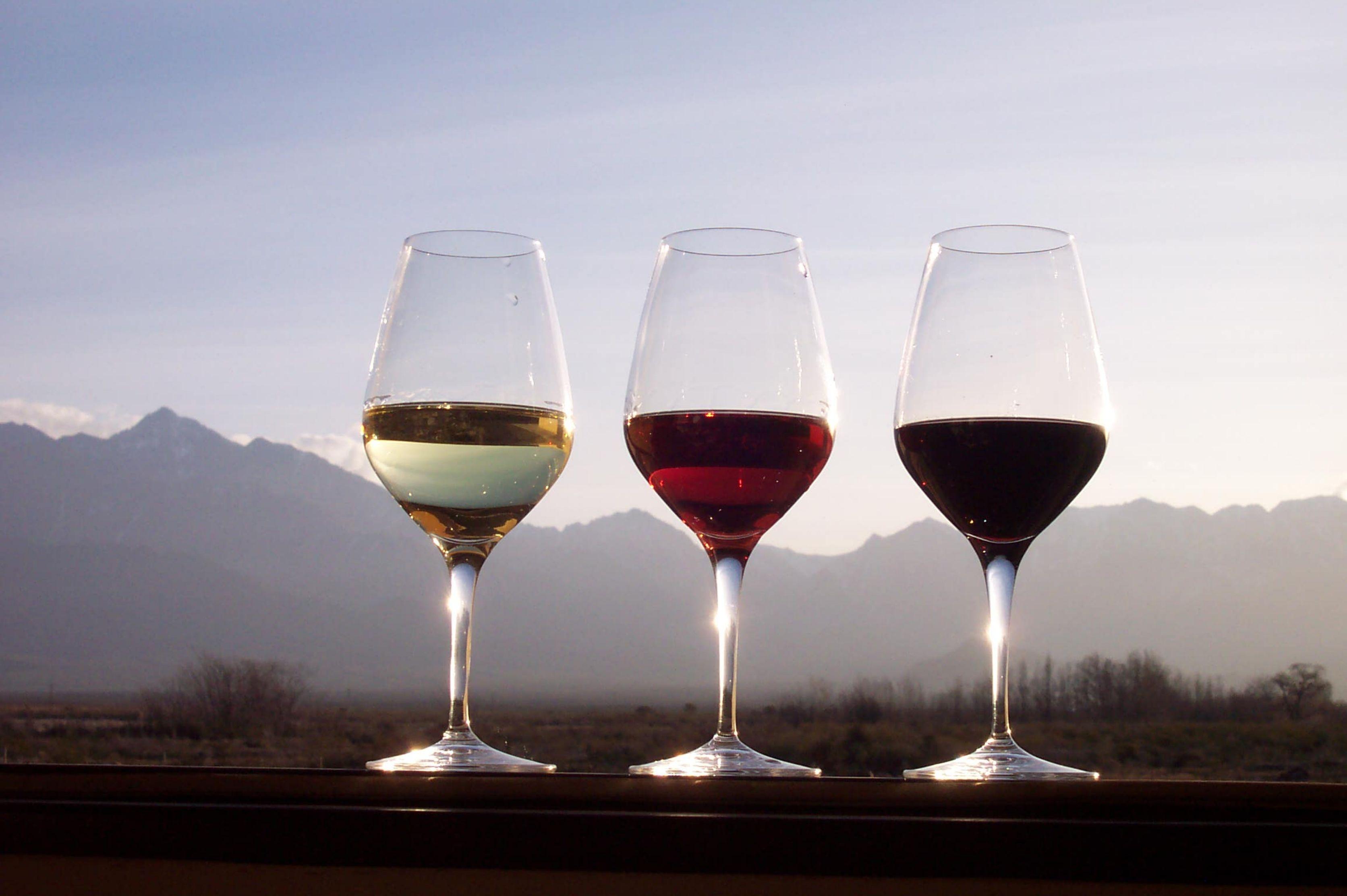 O Nosso Vinho em Portugal